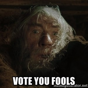 gandalf run you fools closeup -  Vote you fools