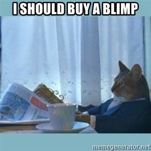rich cat  - i should buy a blimp