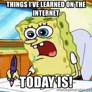 Spongebob What I Learned In Boating School Is - Things I've learned on the internet today is!