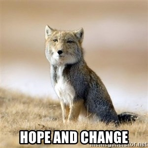 Disappointed Tibetan Fox -  hope and change