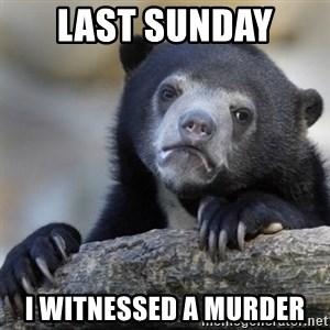 Confessions Bear - last sunday  i witnessed a murder