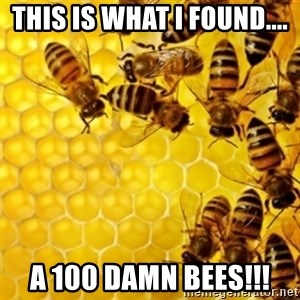 Honeybees - this is what I found.... a 100 damn bees!!!
