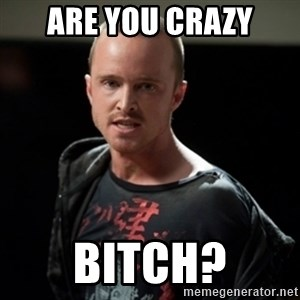 Jesse Pinkman says Bitch - Are you crazy Bitch?