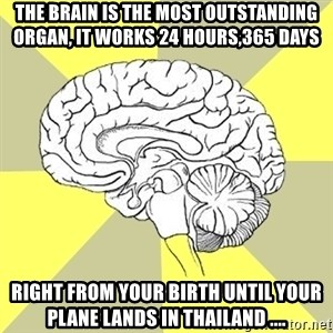 Traitor Brain - The brain is the most outstanding organ, It works 24 hours,365 days right from your birth until your plane lands in Thailand ....