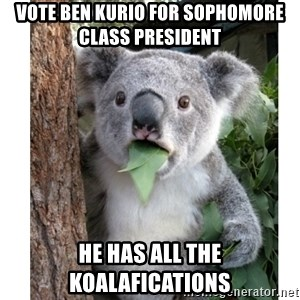 surprised koala - Vote Ben Kurio for Sophomore class president He has all the koalafications