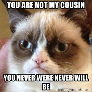 Angry Cat Meme - You Are Not My Cousin You Never Were Never Will Be