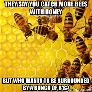 Honeybees - They say you catch more bees with honey But who wants to be surrounded by a bunch of b's?