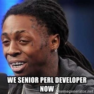 we president now -  WE SENIOR PERL DEVELOPER NOW