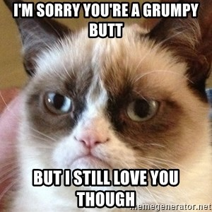 Angry Cat Meme - I'm Sorry You're A Grumpy Butt But I Still Love You Though