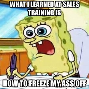 Spongebob What I Learned In Boating School Is - What I learned at sales training is How to freeze my ass off
