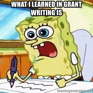 Spongebob What I Learned In Boating School Is - What I learned in grant writing is