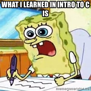 Spongebob What I Learned In Boating School Is - What I learned in intro to C is