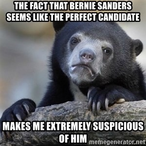 Confessions Bear - the fact that Bernie Sanders seems like the perfect candidate makes me extremely suspicious of him