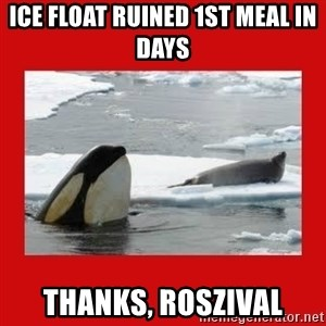 Thanks Obama! - ice float ruined 1st meal in days thanks, roszival