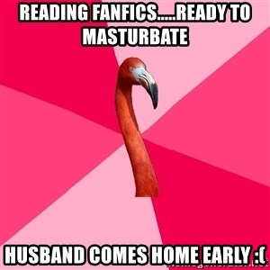 Fanfic Flamingo - reading fanfics.....ready to masturbate  husband comes home early :(
