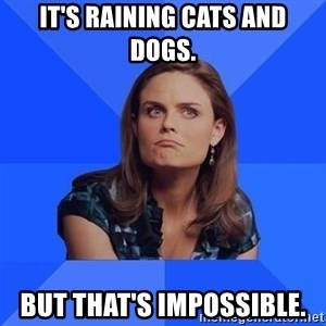 Socially Awkward Brennan - It's raining cats and dogs. But that's impossible.