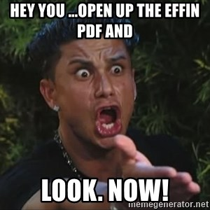 Lookathim - HEY YOU ...open up the EFFIN pdf AND  LOOK. NOW!