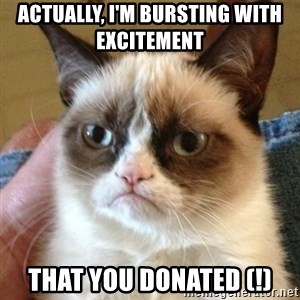 not funny cat - Actually, I'm bursting with excitement  that you donated (!)