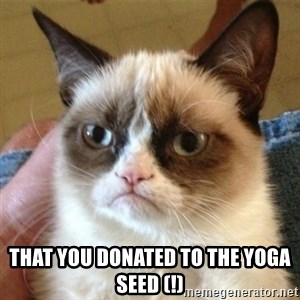 not funny cat -  that you donated to the yoga seed (!)