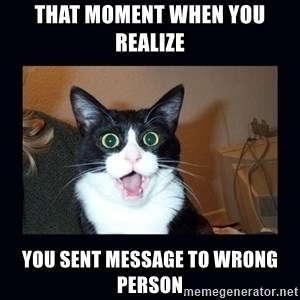 shocked cat - that moment when you realize  you sent message to wrong person