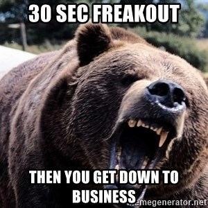 Bear week - 30 sec freakout Then you get down to business