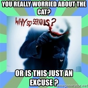 Why so serious? meme - You really worried about the cat? Or is this just an excuse ?