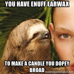 Dirty Sloth - you have enuff earwax to make a candle you dopey broad