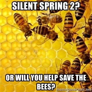 Honeybees - Silent Spring 2? Or Will You Help Save The Bees?