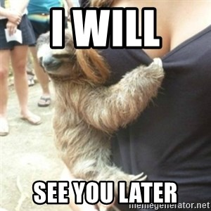 Perverted Sloth - I will  See you later