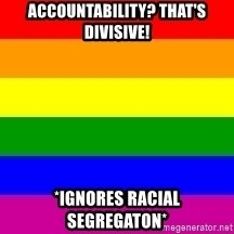 You're Probably Gay - Accountability? That's divisive! *Ignores racial segregaton*