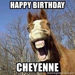 Horse - Happy Birthday  Cheyenne