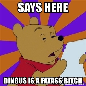 Skeptical Pooh - SAYS HERE DINGUS IS A FATASS BITCH