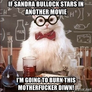 Chemistry Cat - If Sandra Bullock stars in another movie I'm going to burn this motherfucker diwn!