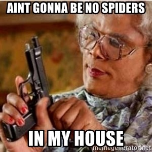 Madea-gun meme - Aint gonna be no spiders in my house