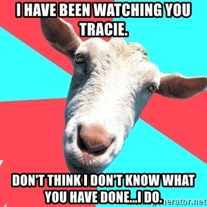 Oblivious Activist Goat - I have been watching you Tracie. Don't think I don't know what you have done...I do.