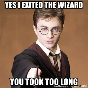 Advice Harry Potter - YES I EXITED THE WIZARD YOU TOOK TOO LONG