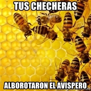 Honeybees - Tus Checheras Alborotaron el avispero