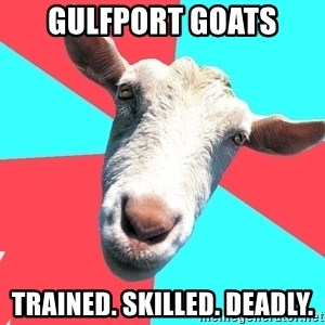 Oblivious Activist Goat - Gulfport Goats Trained. Skilled. Deadly.
