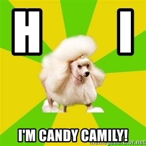 Pretentious Theatre Kid Poodle - H        i               I'm candy camily!