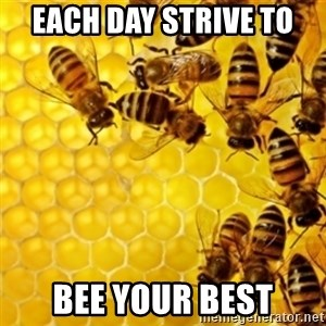 Honeybees - Each day strive to  bee your best