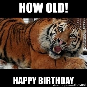 Sarcasm Tiger - How old! Happy Birthday