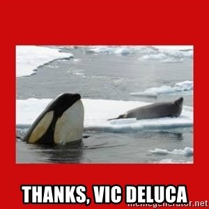 Thanks Obama! -  Thanks, Vic DeLuca