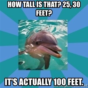 Dyscalculic Dolphin - How tall is that? 25, 30 feet? It's actually 100 feet.
