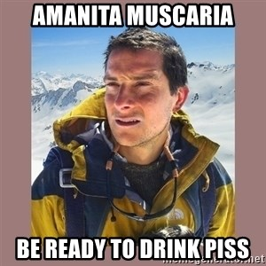 Bear Grylls Piss - Amanita muscaria be ready to drink piss