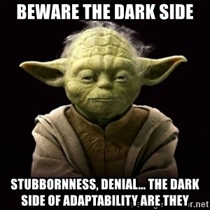 ProYodaAdvice - Beware the dark side Stubbornness, denial... the dark side of adaptability are they