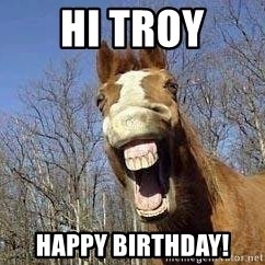 Horse - Hi Troy Happy Birthday!