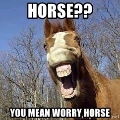 Horse - Horse?? YOu mean worry horse