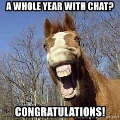Horse - A whole year with chat? congratulations!