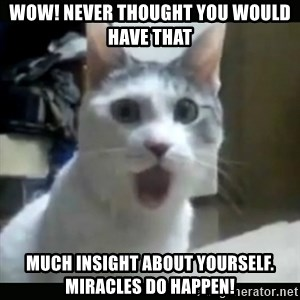Surprised Cat - WOW! Never thought you would have that much insight about yourself. miracles do happen!