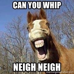 Horse - can yOU WHIP neigh neigh